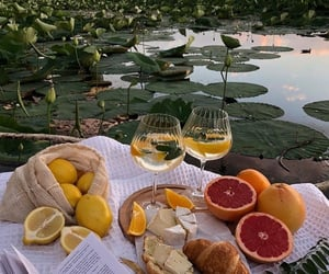 aesthetic, book, and citrus image