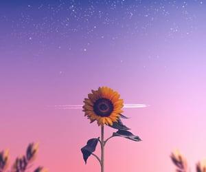 flower, landscape, and nature image