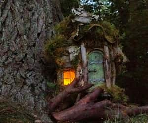 cosy, cottage, and enchanted image
