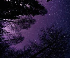 stars, sky, and purple image