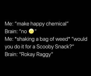funny, mood, and humor image