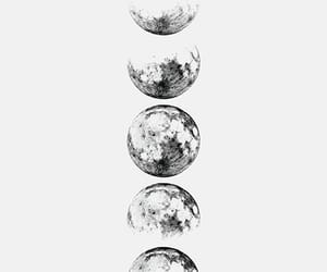 moon and moon phases image