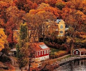 Autumn 🍁🍁🍁