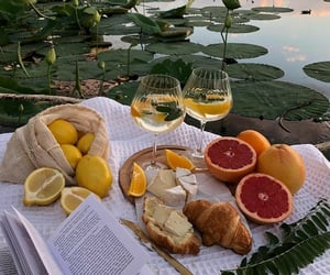picnic, aesthetic, and grapefruit image