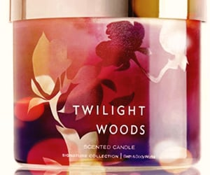 candle, bath and body works, and twilight woods image