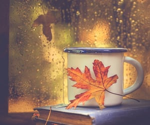 autumn is coming...🍁☕️