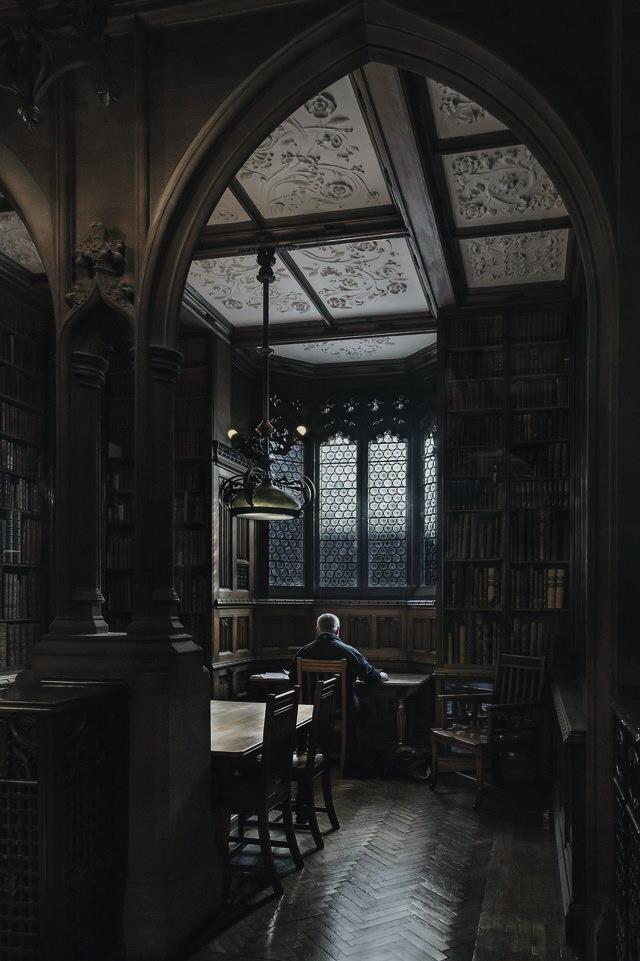 aesthetic, dark academia, and dark image