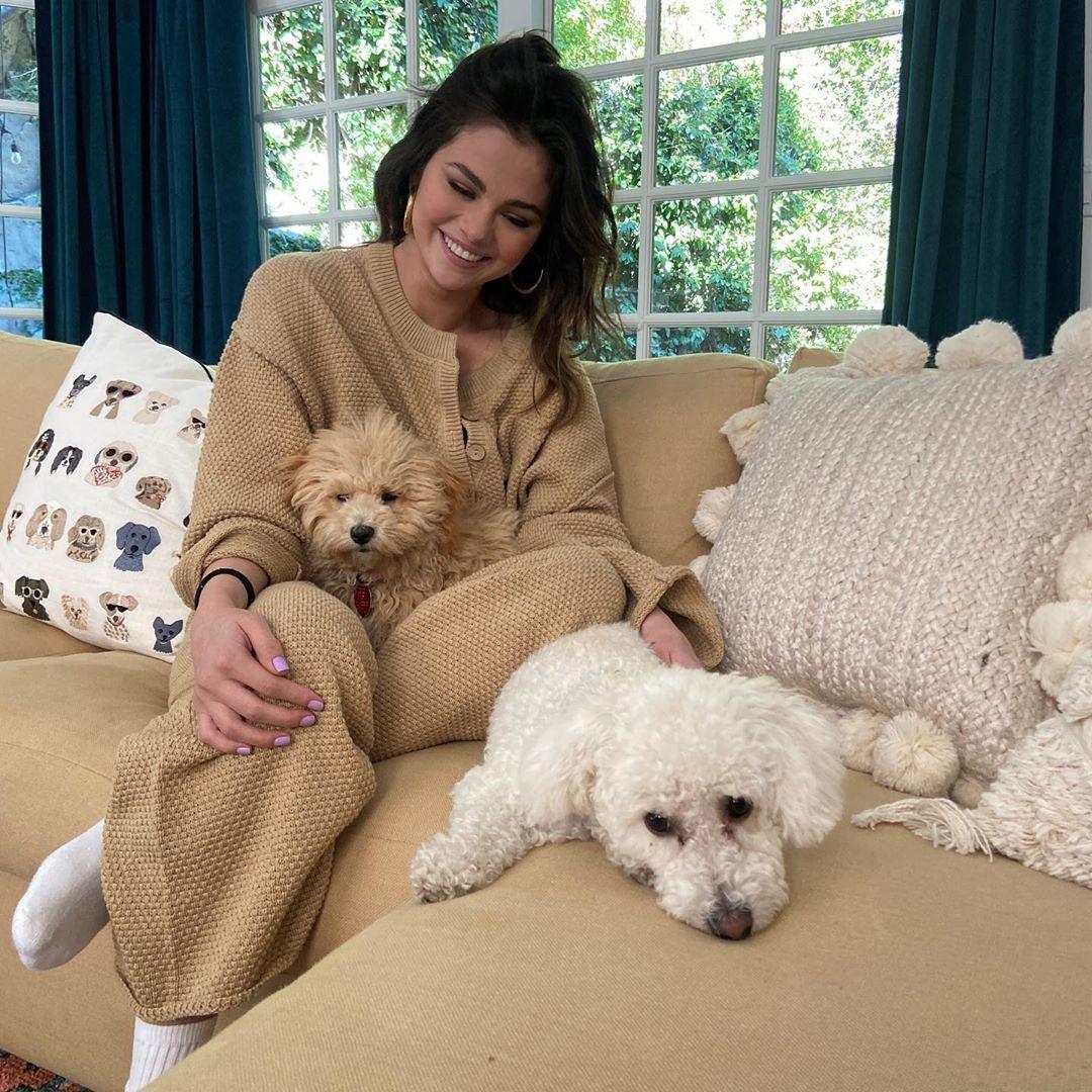 selena gomez, dog, and puppy image