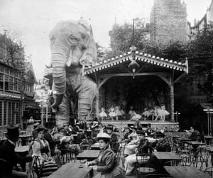 1900s, garden, and elephant image
