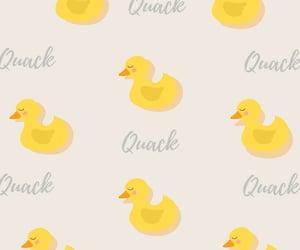 duck, fundo de tela, and ducks image