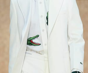 fashion, lacoste, and style image
