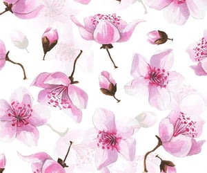 floral wallpaper, phone wallpaper, and floral background image