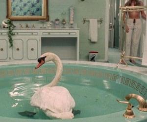 aesthetic, animals, and bath image