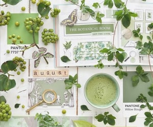 August, cup of tea, and green image
