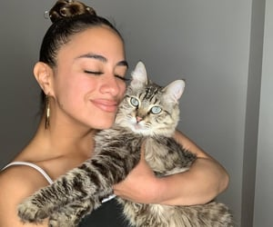 cat, pet, and ally brooke image