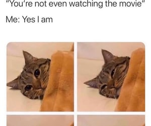 blanket, laugh, and movie image