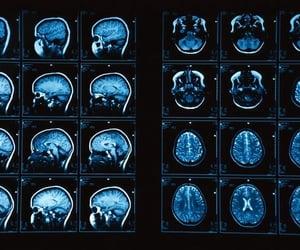 brain, greys anatomy, and theme image