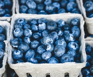 basket, blueberries, and blue image