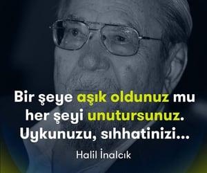 alıntı, türkçe sözler, and halil inalcık image