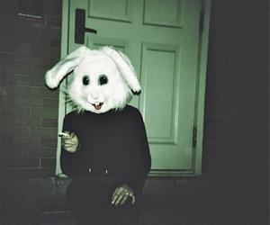 rabbit, bunny, and smoke image