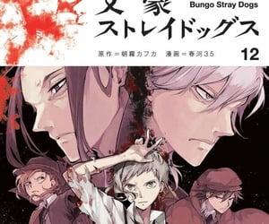 bsd, bungou stray dogs, and anime image