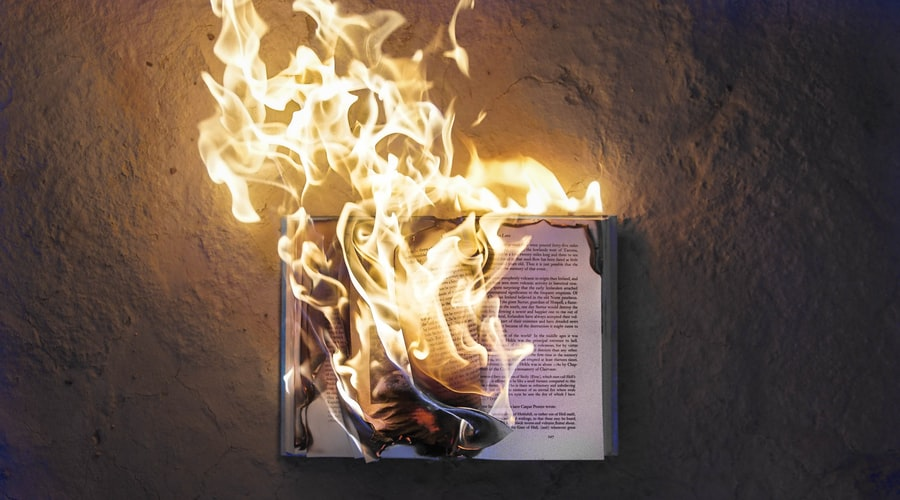 amor, book, and fire image