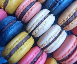 chips, testy, and macaron image