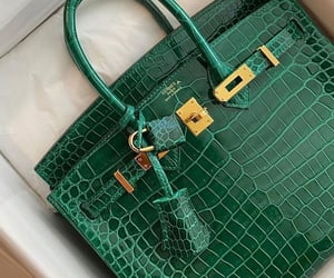 bags, croco, and lifestyle image