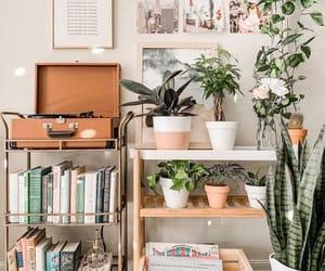 interior, interior design, and plants image