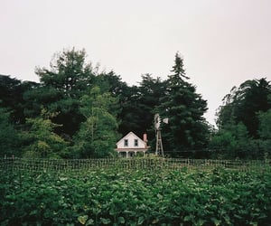 cottage, farm, and country image