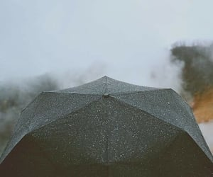rain, umbrella, and autumn image