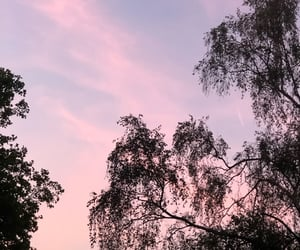 clouds, forest, and purple image