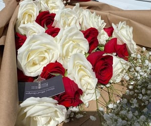 adorable, white, and white roses image