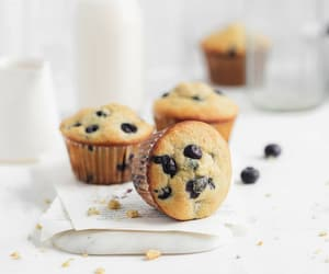 blueberry corn bread muffins