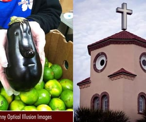 funny, optical illusion, and funny picture image