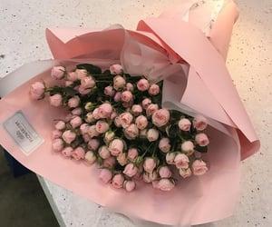flower, romantic, and valentine image