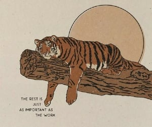 quotes, rest, and tiger image