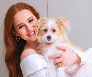 cherry blossom, riverdale, and madelaine petsch image