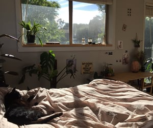 aesthetic, article, and bedroom decor image