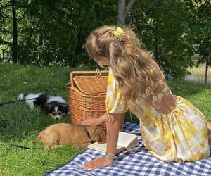 dog, picnic, and animal image