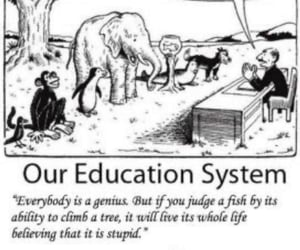 education, word, and quotes albert einstein image