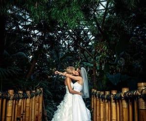lesbian, girl, and wedding image