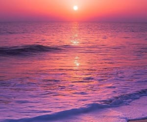 beach, pink, and landscape image