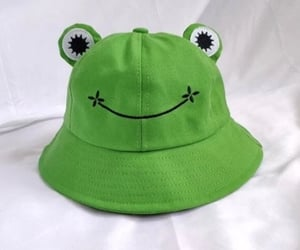 frog, frogs, and hat image