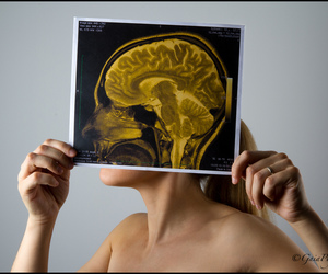 blond, blonde, and brain image
