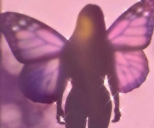 aesthetic, butterfly, and girly image