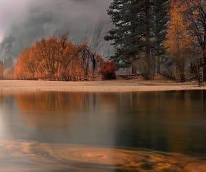 Automne - #couleurs #automne #feuilles mortes #forêt #nature