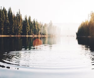 lake, quiet, and lakeside image