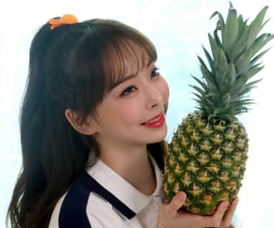 icon, pineapple, and summer package image