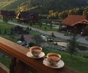 nature, tea, and travel image
